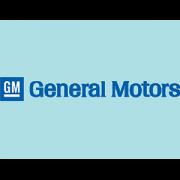 Access-holidays-&-events-Logo-partners-General-Motors-min